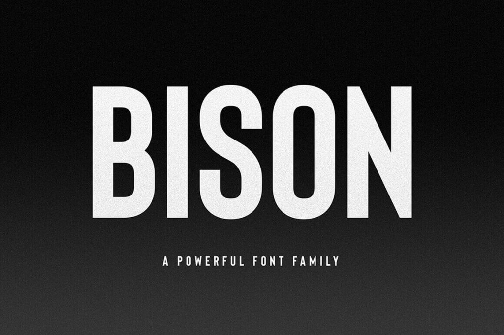 - bison 1024x682 - Bison, A Powerful Sans Serif font family